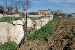 muro-di-contenimento-4